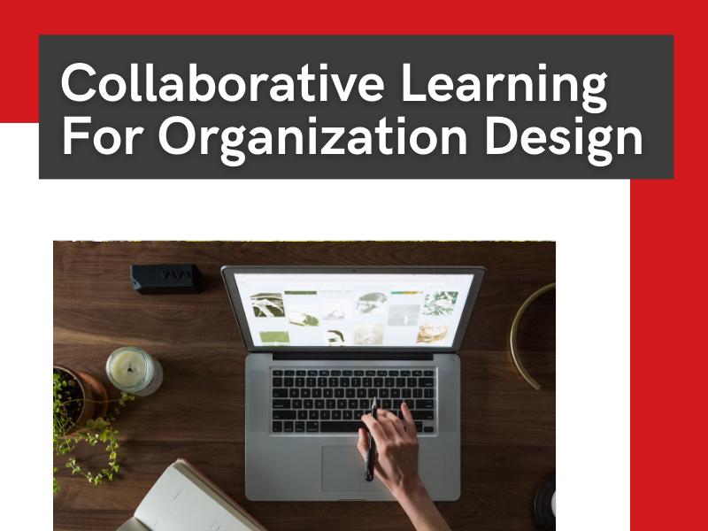 collaborative learning for organization design